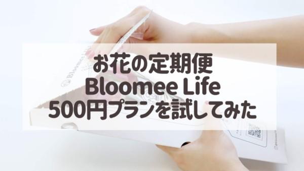 お花の定期便「Bloomee Life(ブルーミーライフ)」試してわかった良いところ・残念だったところ