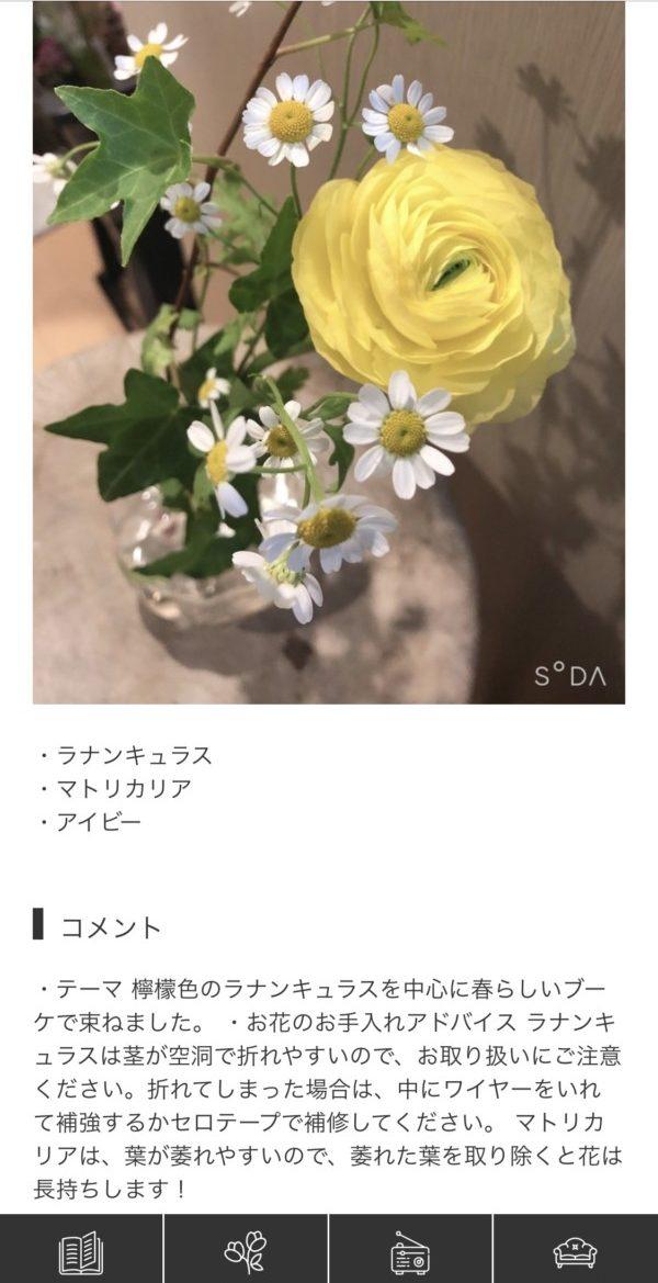 Bloomee Life ブルーミーライフ お花のサブスク サブスクリプション ポスト